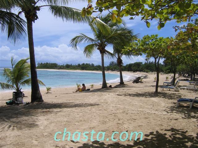 Plage des Raisins Clairs Photos de Guadeloupe