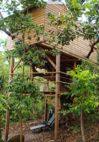 ecotourisme guadeloupe